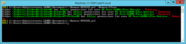 Correcting Public Folder Permissions before an Office 365 Migration